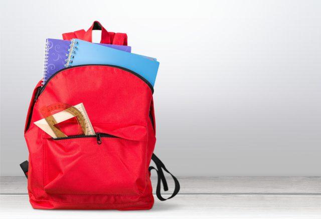 School backpack back full background isolated educational